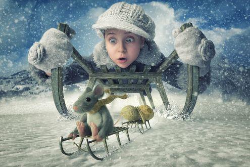 Обои Девочка мчится на санках и с удивлением смотрит на мышку, которая тоже едет на санках, фотограф John Wilhelm