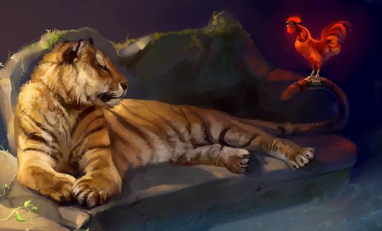 Обои Тигр, лежащий на камне, смотрит на красного петуха, сидящего у него на хвосте, by SalamanDra-S