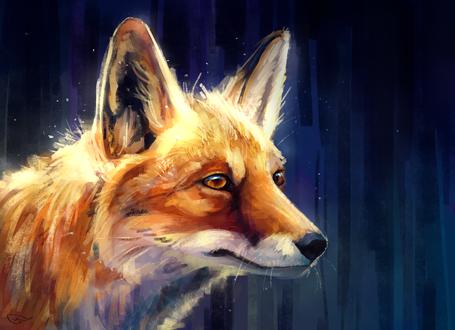Обои Рыжая лиса на синем фоне, by AlaxendrA