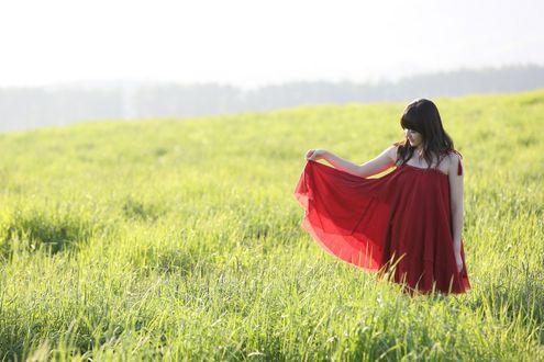 Обои Японская певица, участница группы C-ute, Судзуки Айри / Suzuki Airi стоит посреди поля в красном платье