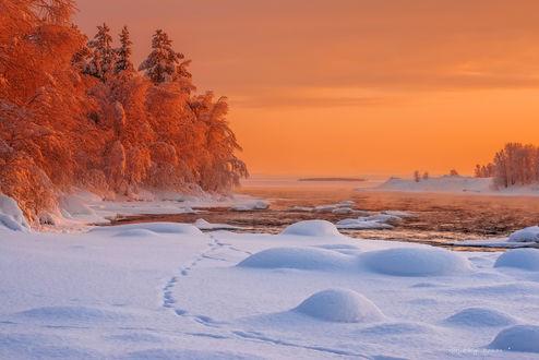 Обои Природа зимой в Заполярье, фотограф Роман Горячий