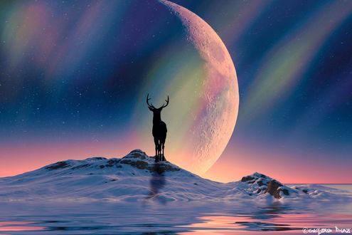 Обои Силуэт оленя на фоне планеты, by gustiidiaz