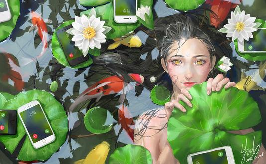 Обои Темноволосая девушка, прикрывается листом кувшинки, лежа в пруду, где плавают карпы кои и Айфоны, by 黑語離