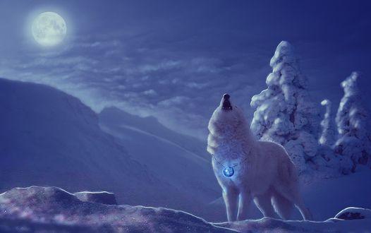 Обои Волк с медальоном воет на луну, by annewipf