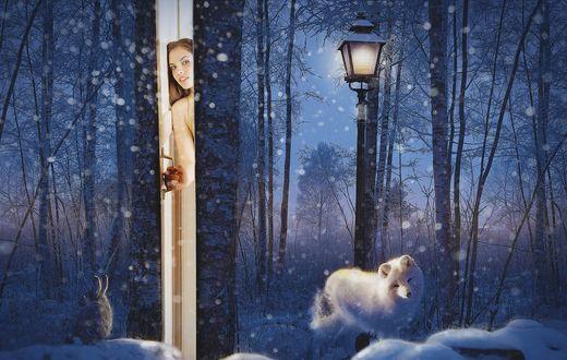 Обои Девушка смотрит в приоткрытую дверь с зимним пейзажем, by annewipf