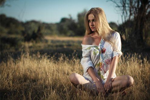 Обои Красивая девушка веснушчатая с оголенным плечом сидит в траве на фоне природы