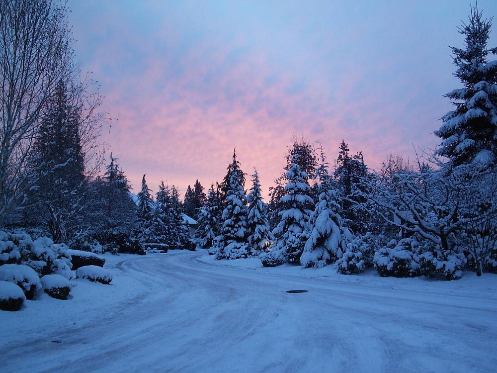 Обои для рабочего стола Зимняя дорога к дому, виднеющимуся за заснеженными елями