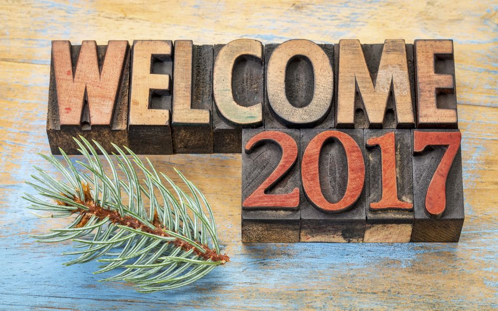 Обои для рабочего стола Надпись Welcome 2017 / Добро пожаловать в 2017 и еловая веточка
