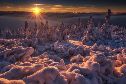Обои Морозный закат, фотограф Pawel Uchorczak