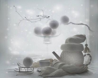 Обои Зимний натюрморт перед окном, фотограф Вероника Бабенко