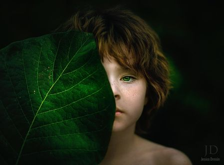 Обои Маленький мальчик с необычными зелеными глазами прикрыл лицо большим листом, by Djessica Drossin