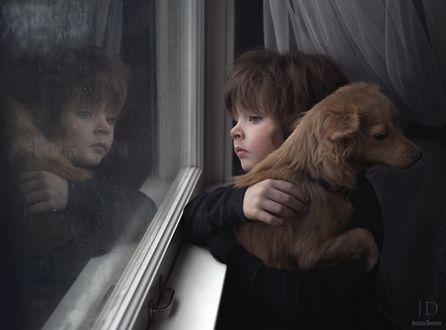 Обои Маленький мальчик, держа на руках собаку очень грустно и волнительно в ожидании смотрит в окно за которым идет дождь, by Djessica Drossin