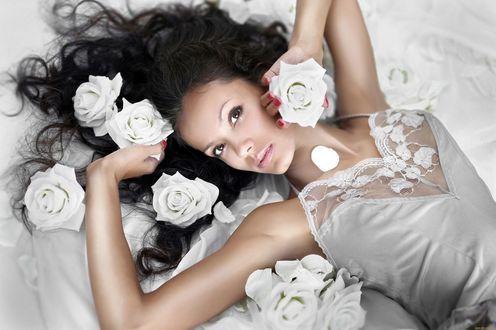 Обои Девушка в нижнем белье лежит на постели с розами