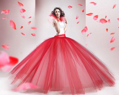 Обои Девушка в пышном платье, вокруг летают лепестки цветов