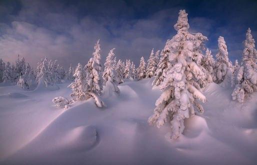 Обои Работа Кудесница зима, Южный Урал, хребет Зюраткуль, фотограф marateaman