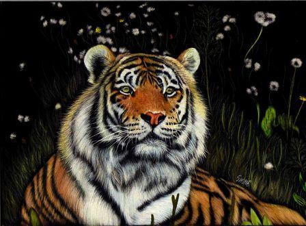 Обои Лежащий ночью тигр на фоне цветов