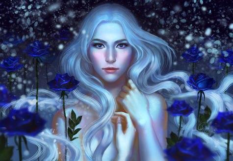 Обои Девушка с белыми, длинными волосами стоит среди синих роз, by Anndr