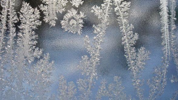 Обои Морозные узоры на стекле