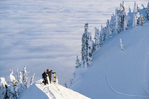 Обои Лыжники на крутом снежном склоне на фоне леса