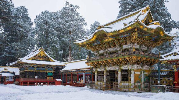 Обои Буддийский храм с заснеженной крышей и заснеженные деревья, Япония / Japan