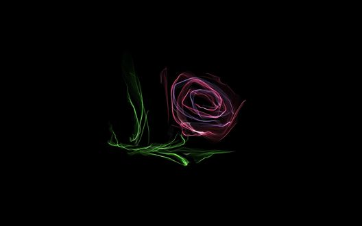 Обои Нарисованная роза на черном фоне