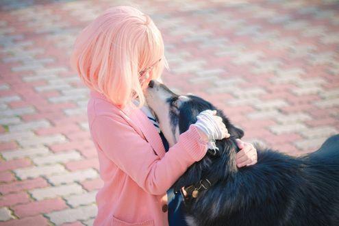 Обои Косплей Мирай Курияма / Mirai Kuriyama гладит собаку из аниме Kyoukai no Kanata / За гранью