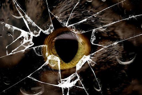Обои За разбитым стеклом кошачий глаз