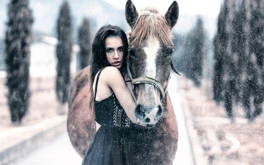 Обои Темноволосая девушка стоит возле лошади под снегопадом, фотограф Alessandro Di Cicco