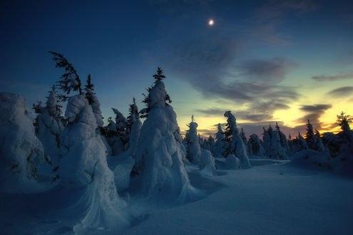 Обои Вечерний Таганай зимой, фотограф Владимир Ляпин