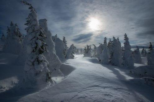 Обои Путь солнца над зимней природой, Южный Урал, Таганай, фотограф Владимир Ляпин