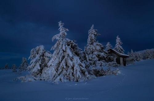 Обои Домик за деревьями в снегу, фотограф Jоrn Allan Pedersen