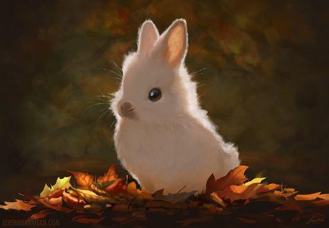 Обои Зайчик сидя на осенних листьях заострил ушки