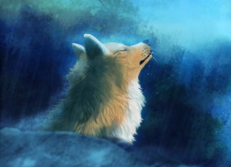 Обои Белый волк на голубом фоне, by defineDEAD