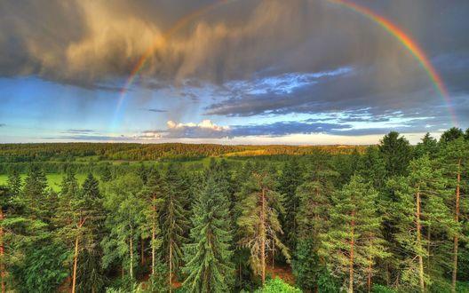 Обои Радуга в небе над лесами и полями