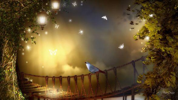 Обои Красивая птичка сидит на подвесном мосту, вокруг летают светящиеся бабочки, на дереве фонари
