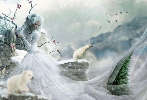 Обои Девушка в белом стоит на скале перед белым медвежонком, работа - зимняя история, by eZeeD