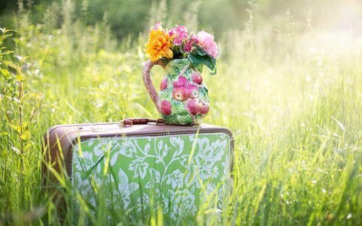 Обои Букет цветов в вазе стоит на красивом цветастом чемодане, среди зеленой травы