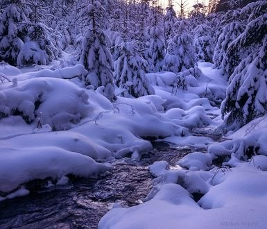 Обои Зимний пейзаж вблизи Bucin, Romania / Bucin, Румыния, фотограф Adrian Borda