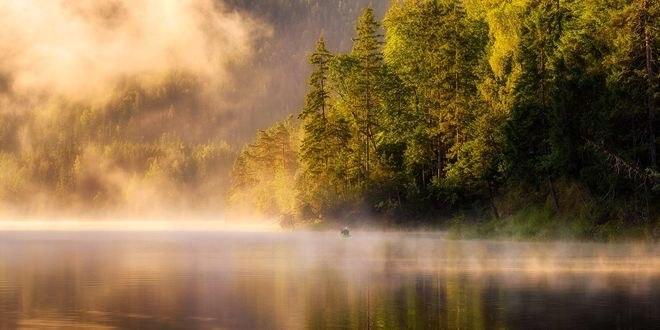 Обои Утренний туман на озере, фотограф Daniel F