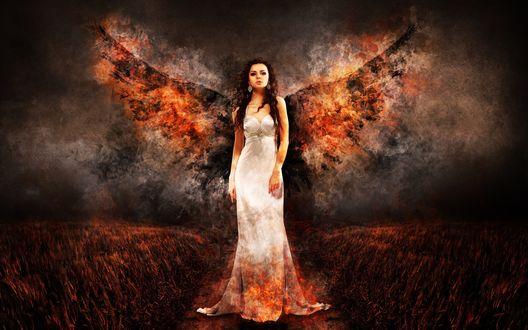 Обои Девушка-ангел в белом платье стоит на тропинке в поле