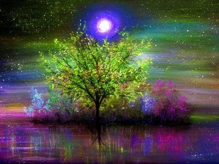 Обои Дерево под лунным светом, by Ann Marie Bone