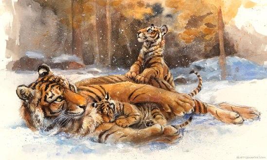 Обои Тигрица с тигрятами на снегу, by kenket