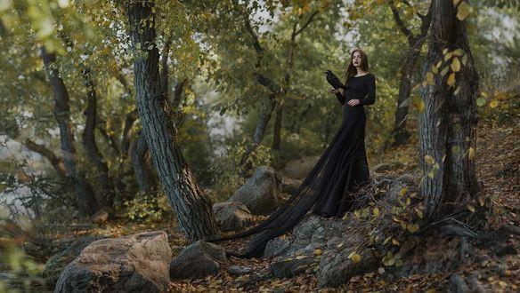 Обои Девушка с вороном на руке стоит в лесу, фотограф Irina Dzhul