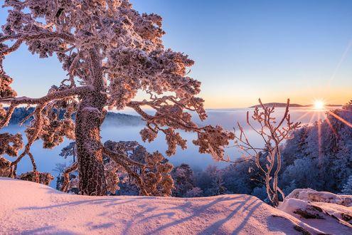 Обои Рассвет над заснеженной природой, фотограф Tobias Ryser
