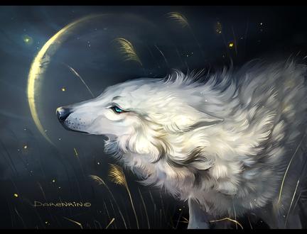 Обои Дух волка, by Darenrin