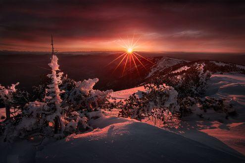 Обои Зимний закат в Mont Ventoux, Provence-Alpes-Côte dAzur, France / Ванту, Прованс-Альпы-Лазурный берег, Франция, фотограф Julien Delaval