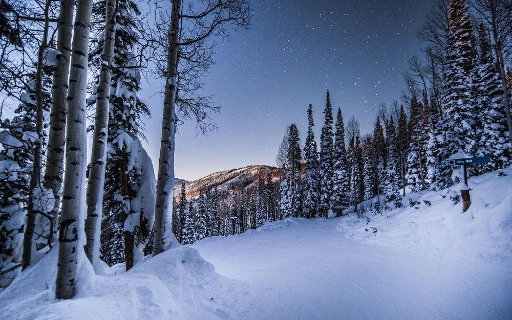 Обои для рабочего стола Зимний пейзаж с заснеженными деревьями на фоне гор