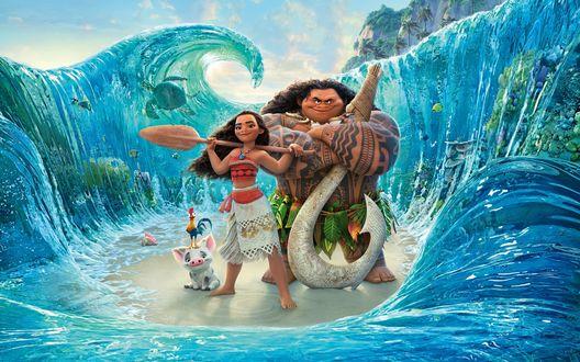 Обои Моана Ваялики / Moana Waialiki, полубог Мауи / Maui, поросенок Пуа / Pua и петух Хей - хей из мультфильма Моана / Moana