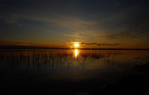 Обои Закат солнца над водоемом, заросшим травой