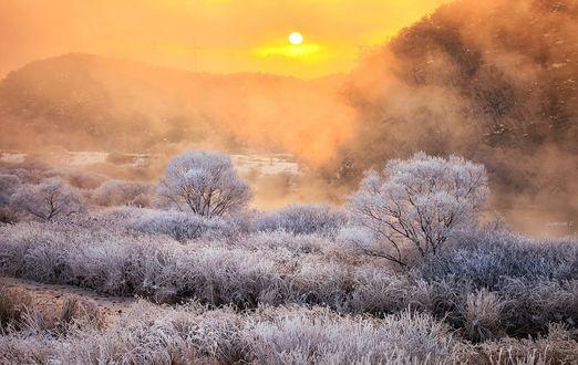 Обои Рассвет над природой в инее, фотограф Jaewoon U